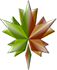 Cyklinowanie, układanie, naprawa parkietów i podłóg drewnianych w Zamościu logo firmy